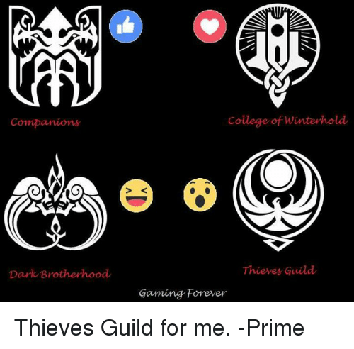 Companions Dark Brotherhood College Of Winterhold Thieves Guild