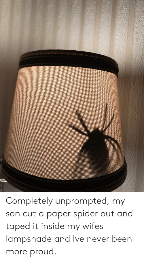 Spider, Wife, and Proud: Completely unprompted, my son cut a paper spider out and taped it inside my wifes lampshade and Ive never been more proud.