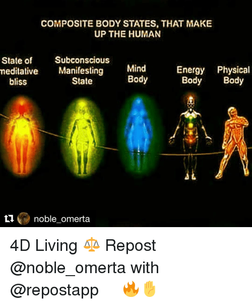 Memes, 🤖, and Bliss: COMPOSITE BODY STATES, THAT MAKE  UP THE HUMAN  State of  Subconscious  meditative  Manifesting  Mind  Energy Physical  Body  Body Body  State  bliss  noble omerta 4D Living ⚖️ Repost @noble_omerta with @repostapp ・・・ 🔥✋
