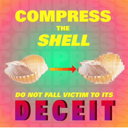 Fall, Shell, and Deceit: COMPRESS  THE  SHELL  DO NOT FALL VICTIM TO ITS  DECEIT