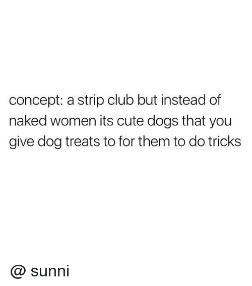 Club, Cute, and Dogs: concept: a strip club but instead of  naked women its cute dogs that you  give dog treats to for them to do tricks @ sunni