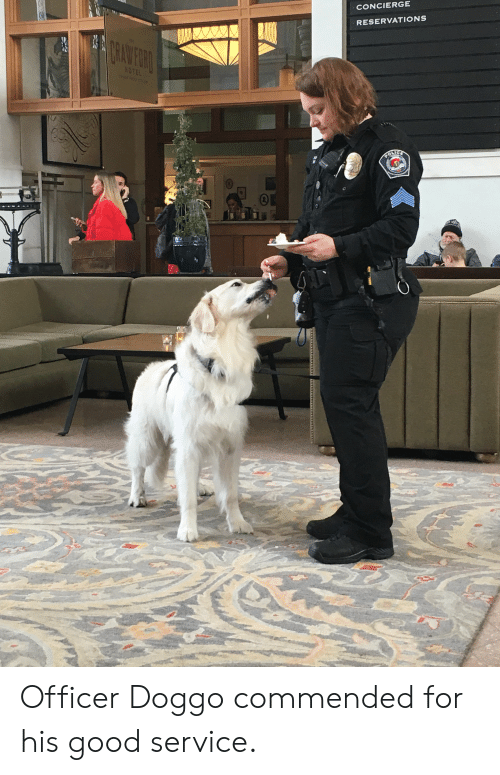 Good, Doggo, and Service: CONCIERGE  RESERVATIONS  0 Officer Doggo commended for his good service.