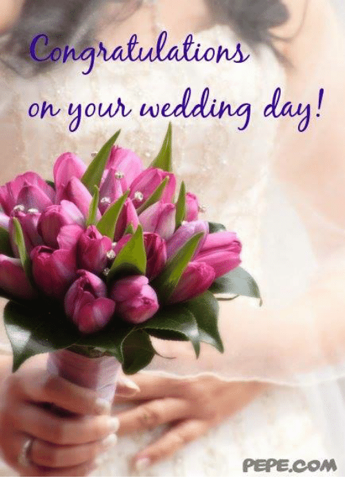 Congratulations On Your Wedding Day.Congratulations On Your Wedding Day Pepecom Meme On Me Me