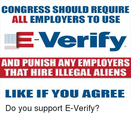 Memes, Aliens, and 🤖: CONGRESS SHOULD REQUIRE  ALL EMPLOYERS TO USE  E Verify  AND PUNISH ANY EMPLOYERS  THAT HIRE ILLEGAL ALIENS  LIKE IF YOU AGREE Do you support E-Verify?