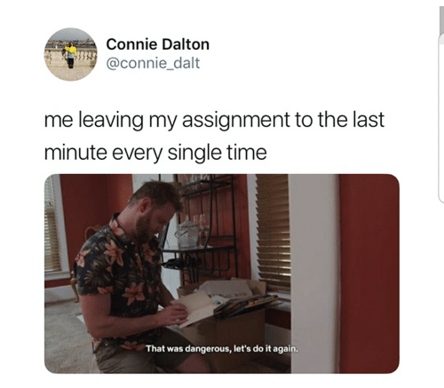 Do It Again, Time, and Single: Connie Dalton  @connie dalt  me leaving my assignment to the last  minute every single time  hat was dangerous, let's do it again.