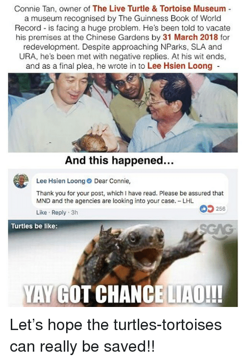 Be Like, Memes, and Thank You: Connie Tan, owner of The Live Turtle & Tortoise Museum -  a museum recognised by The Guinness Book of World  Record is facing a huge problem. He's been told to vacate  his premises at the Chinese Gardens by 31 March 2018 for  redevelopment. Despite approaching NParks, SLA and  URA, he's been met with negative replies. At his wit ends,  and as a final plea, he wrote in to Lee Hsien Loong  And this happened...  Lee Hsien Loong Dear Connie,  Thank you for your post, whichI have read. Please be assured that  MND and the agencies are looking into your case. LHL  Like Reply 3h  256  Turtles be like:  YAY GOT CHANCE LIAO!!! Let's hope the turtles-tortoises can really be saved!!