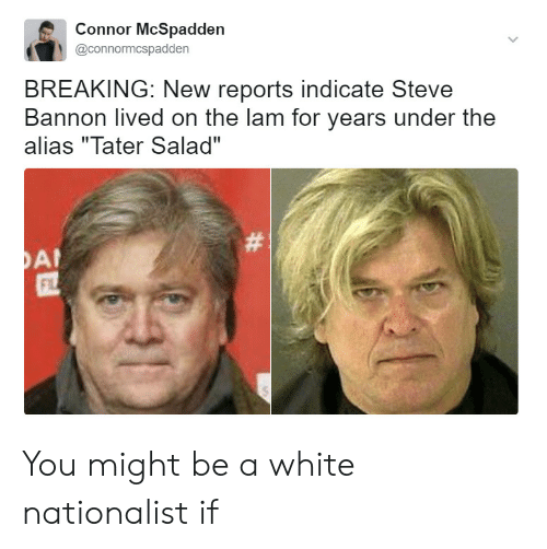 """White, Alias, and Steve: Connor McSpadden  @connormcspadden  BREAKING: New reports indicate Steve  Bannon lived on the lam for years under the  alias """"Tater Salad""""  FL You might be a white nationalist if"""