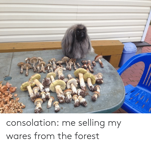 Target, Tumblr, and Blog: consolation: me selling my wares from the forest