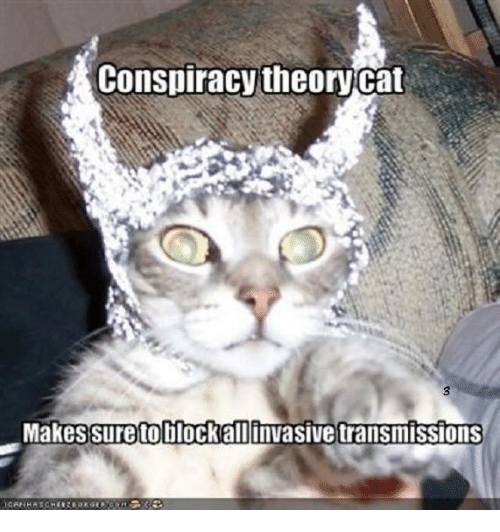 conspiracy cat makes sureto blockall invasive transmissions 14788940 what if the human is not my pet but im his conspiracy cat meme on