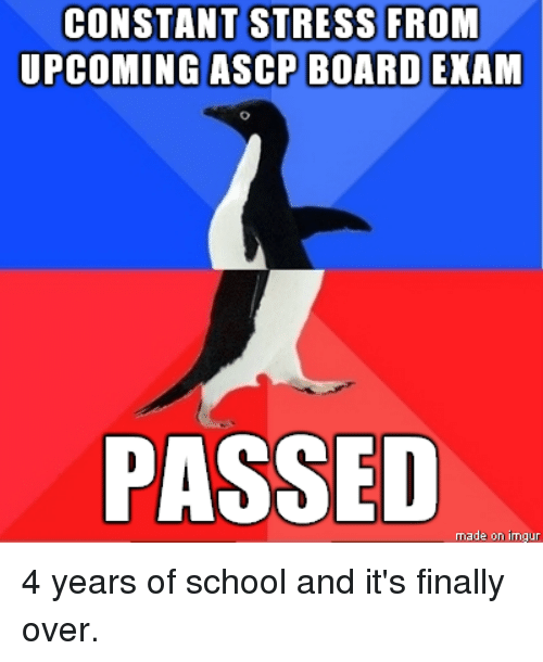 CONSTANT STRESS FROM UPCOMING ASCP BOARD EXAM PASSED Made on Ima Gur