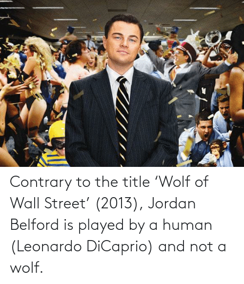 Leonardo DiCaprio, Jordan, and Wolf: Contrary to the title 'Wolf of Wall Street' (2013), Jordan Belford is played by a human (Leonardo DiCaprio) and not a wolf.