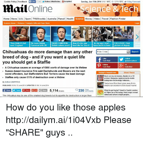"""Apple, Chihuahua, and Cookies: Cookie Policy Feedback GaLike  1.6m Follow eMailOnline ODailyMail  Sunday, Jun 15th 2014  9AM 14°C  12PM 15 c 5 Day Forecast  mail  Online  ech  Sience  Home News l U.S. l Sport l TV&Showbiz l Australia l Femail l Health  Science  Money l Video l Travel Fashion Finder  Science Home Pictures l Gadgets Gifts and Toys  Store  They think it's fall  Be more British  DAVID CAMERON  At my age I don't EXCLUSIVE: First  Now it's the raw  England  Cameron tells UK  British values aren't  food die for Size 6  have much to lose picture of deputy  Chihuahuas do more damage than any other  Csteow a Search  breed of dog and if you want a quiet life  Daily Mail  @dailymailtech  you should get a Staffie  A Chihuahua causes an average of £866 worth of damage over its lifetime  Sussex-based insurance firm said Dachshunds and Boxers are the next  Most Read  Todays headline  worst offenders, but Staffordshire Bull Terriers cause the least damage  Staffies only cause E178 of destruction over a lifetime  printer: Bespoke replacements made  using new technology reduces.  By SARAH GRIFFITHS  Tesla boss Elon Musk gives away firm's  electric car secrets in bid to boost  PUBLISHED: 18:19, 13 June 2014 UPDATED: 0109, 14 June 2014  2300  View  Comments  5,114  Want to get lucky? Head to South London  shares  at 10pm on a Thursday: Heat maps reveal  when and where single people...  The chihuahua may be one of the smallest d  breeds but its appetite for destruction is larger than How do you like those apples http://dailym.ai/1i04Vxb Please """"SHARE"""" guys .. 【ツ】"""