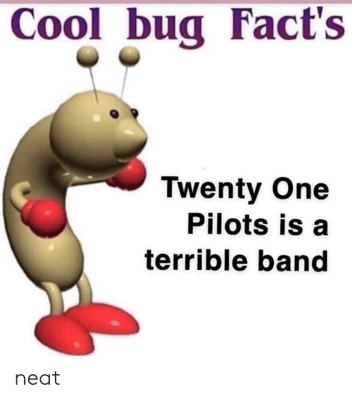 Facts, Memes, and Cool: Cool bug Fact's  Twenty One  Pilots is a  terrible band neat