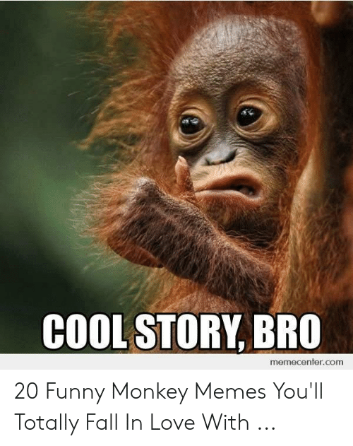 Fall, Funny, and Love: COOL STORY, BRO  memecenter.com 20 Funny Monkey Memes You'll Totally Fall In Love With ...