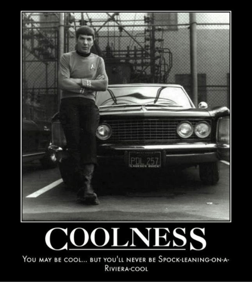 Image result for spock riviera you may be cool