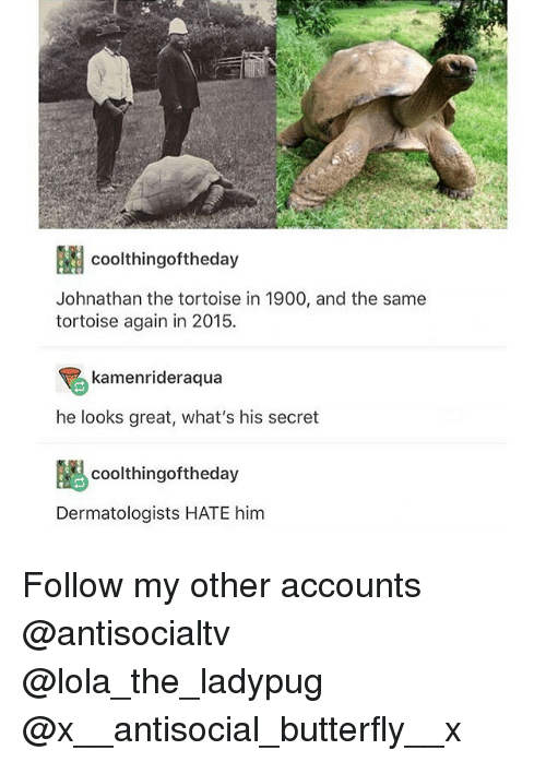 Memes, Butterfly, and Antisocial: coolthingoftheday  Johnathan the tortoise in 1900, and the same  tortoise again in 2015  kamenrideraqua  he looks great, what's his secret  coolthingoftheday  Dermatologists HATE him Follow my other accounts @antisocialtv @lola_the_ladypug @x__antisocial_butterfly__x