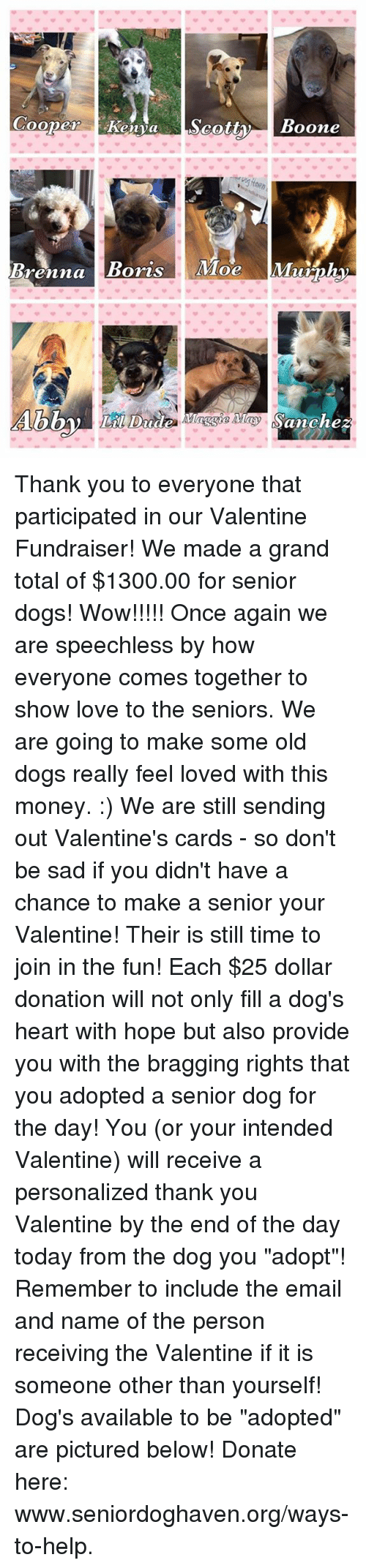 """Memes, Moe., and The Day Today: Cooper Kenya  Scotty  Boone  Brenna  Boris  Moe  Munnha  Sanchez Thank you to everyone that participated in our Valentine Fundraiser! We made a grand total of $1300.00 for senior dogs! Wow!!!!! Once again we are speechless by how everyone comes together to show love to the seniors. We are going to make some old dogs really feel loved with this money. :)  We are still sending out Valentine's cards - so don't be sad if you didn't have a chance to make a senior your Valentine! Their is still time to join in the fun! Each $25 dollar donation will not only fill a dog's heart with hope but also provide you with the bragging rights that you adopted a senior dog for the day! You (or your intended Valentine) will receive a personalized thank you Valentine by the end of the day today from the dog you """"adopt""""! Remember to include the email and name of the person receiving the Valentine if it is someone other than yourself!  Dog's available to be """"adopted"""" are pictured below! Donate here: www.seniordoghaven.org/ways-to-help."""