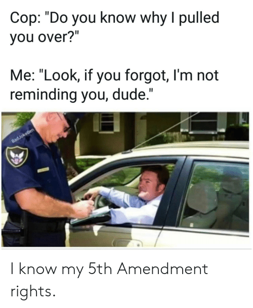 "Dude, Cop, and Why: Cop: ""Do you know why I pulled  you over?""  Me: ""Look, if you forgot, I'm not  reminding you, dude.""  II  8adJokeBen I know my 5th Amendment rights."