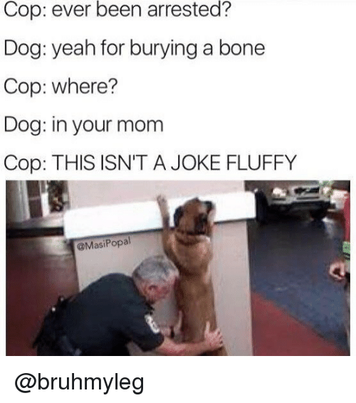 Memes, Yeah, and Mom: Cop:  ever  been  arrested?  Dog: yeah for burying a bone  Cop: where?  Dog: in your mom  Cop: THIS ISN'T A JOKE FLUFFY  @MasiPopal @bruhmyleg