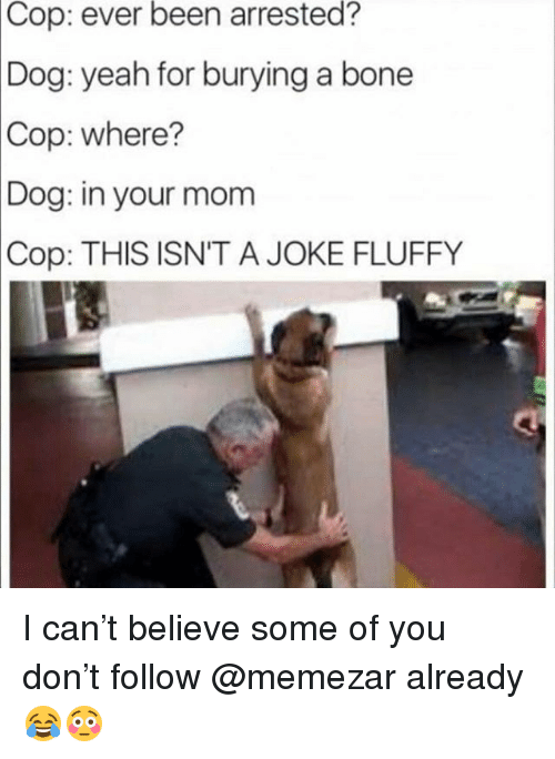 Memes, Yeah, and Mom: Cop:  ever  been  arrested?  Dog:  yeah for burying a bone  Cop: where?  Dog:  in your mom  THIS ISN'T A JOKE FLUFFY  Cop: I can't believe some of you don't follow @memezar already 😂😳