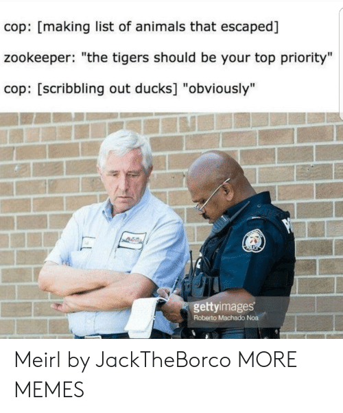 "Animals, Dank, and Memes: cop: [making list of animals that escaped]  zookeeper: ""the tigers should be your top priority""  cop: [scribbling out ducks] ""obviously""  gettyimages  Roberto Machado Noa Meirl by JackTheBorco MORE MEMES"