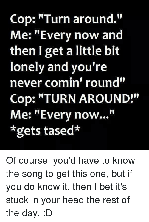 """Head, I Bet, and Memes: Cop: """"Turn around.""""  Me: """"Every now and  then I get a little bit  lonely and you're  never comin' round""""  Cop: """"TURN AROUND!""""  Me: """"Every now...""""  *gets tased* Of course, you'd have to know the song to get this one, but if you do know it, then I bet it's stuck in your head the rest of the day. :D"""