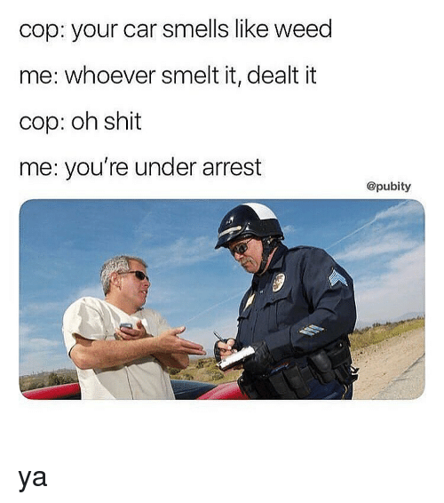 Memes, Weed, and 🤖: cop: your car smells like weed  me: whoever smelt it, dealt it  cop: oh shit  me: you're under arrest  @pubity ya