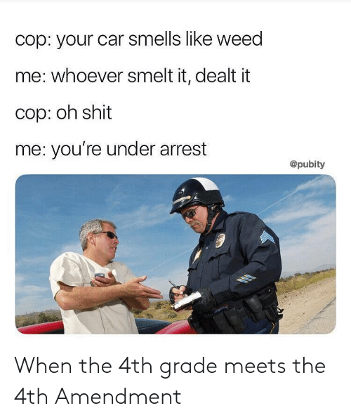 Shit, Weed, and Car: cop: your car smells like weed  me: whoever smelt it, dealt it  cop: oh shit  me: you're under arrest  @pubity When the 4th grade meets the 4th Amendment