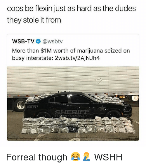 Memes, Wshh, and Marijuana: cops be flexin just as hard as the dudes  they stole it from  WSB-TV @wsbtv  More than $1M worth of marijuana seized on  busy interstate: 2wsb.tv/2AjNJh4  DIAL 911  SHERIFF Forreal though 😂🤦♂️ WSHH