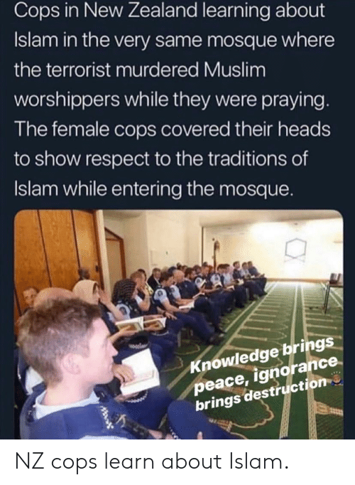 Muslim, Respect, and Islam: Cops in New Zealand learning about  Islam in the very same mosque where  the terrorist murdered Muslim  worshippers while they were praying  The female cops covered their heads  to show respect to the traditions of  Islam while entering the mosque.  Knowledge brings  peace, ignorance  brings destruction NZ cops learn about Islam.