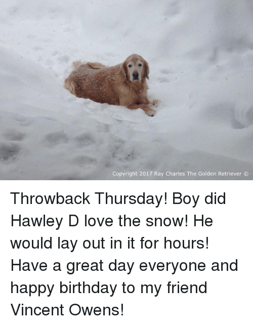 Birthday, Lay's, and Memes: Copyright 2017 Ray Charles The Golden Retriever Throwback Thursday! Boy did Hawley D love the snow! He would lay out in it for hours! Have a great day everyone and happy birthday to my friend Vincent Owens!