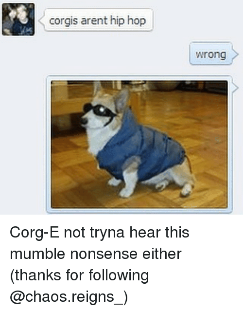 Memes, Hip Hop, and Nonsense: corgis arent hip hop  Wrong Corg-E not tryna hear this mumble nonsense either (thanks for following @chaos.reigns_)