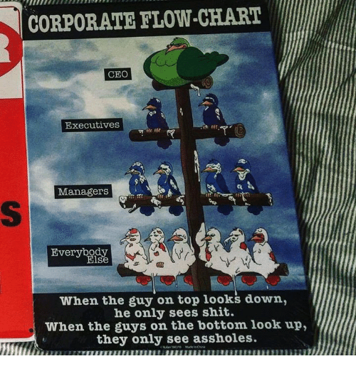 Corporate Flow Chart Ceo Executives Managerst Everybody Lse 27 When