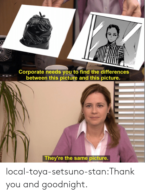 Stan, Tumblr, and Thank You: Corporate needs you to find the differences  between this picture and this picture.  They're the same picture. local-toya-setsuno-stan:Thank you and goodnight.
