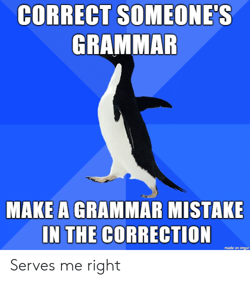 Imgur, Make A, and Grammar: CORRECT SOMEONE'S  GRAMMAR  MAKE A GRAMMAR MISTAKE  IN THE CORRECTION  made on imgur Serves me right