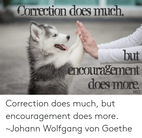8c61676371ac Correction Does Much but Encouragement Dloes More MIT Correction ...