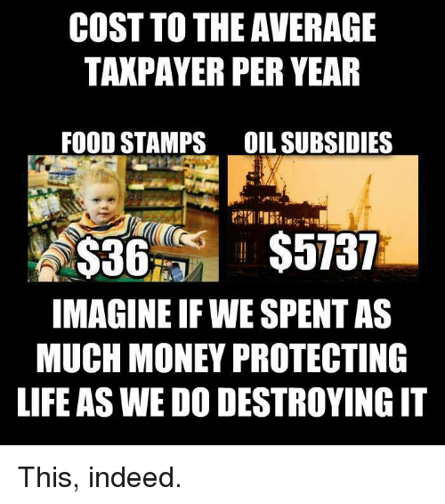 cost to the average taxpayer per year food stamps dil 20684782 ✅ 25 best memes about stamps stamps memes