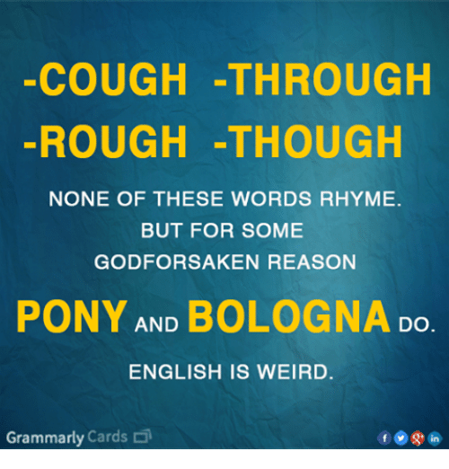 Memes, Weird, and English: COUGH -THROUGH  ROUGH -THOUGH  NONE OF THESE WORDS RHYME.  BUT FOR SOME  GODFORSAKEN REASON  PONY AND BOLOGNA Do  ENGLISH IS WEIRD.  Grammarly Cards