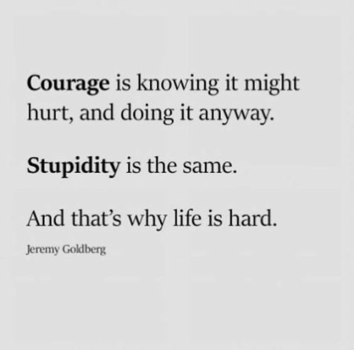 Life, Courage, and Stupidity: Courage is knowing it might  hurt, and doing it anyway  Stupidity is the same  And that's why life is hard.  Jeremy Goldberg