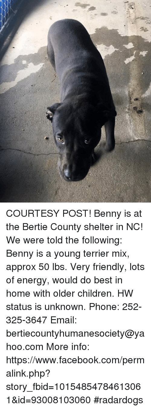 Home Market Barrel Room Trophy Room ◀ Share Related ▶ Children Energy Facebook memes Phone Best Email facebook.com Home The Following Yahoo yahoo.com next collect meme → Embed it next → COURTESY POST! Benny is at the Bertie County shelter in NC! We were told the following Benny is a young terrier mix approx 50 lbs Very friendly lots of energy would do best in home with older children HW status is unknown Phone 252-325-3647 Email bertiecountyhumanesociety@yahoocom More info httpswwwfacebookcompermalinkphp?story_fbid=10154854784613061&id=93008103060 #radardogs Meme Children Energy Facebook memes Phone Best Email facebook.com Home The Following Yahoo yahoo.com 🤖 php com lots shelter following unknown bests lbs story terriers post www more terrier courtesy were benny young Mixing Www Facebook Com Older The Friendly Status Told Mix Very Info Infos With Www Facebook Children Children Energy Energy Facebook Facebook memes memes Phone Phone Best Best Email Email facebook.com facebook.com Home Home The Following The Following Yahoo Yahoo yahoo.com yahoo.com 🤖 🤖 php php com com lots lots shelter shelter following following unknown unknown bests bests lbs lbs story story terriers terriers post post www www more more terrier terrier courtesy courtesy were were benny benny None None Mixing Mixing Www Facebook Com Www Facebook Com Older Older The The Friendly Friendly Status Status Told Told Mix Mix Very Very Info Info Infos Infos With With Www Facebook Www Facebook found @ 6 likes ON 2017-08-10 13:10:42 BY me.me source: facebook view more on me.me