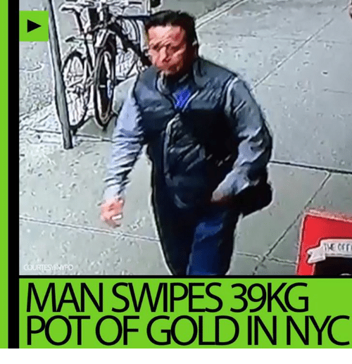Dank, 🤖, and Gold: COURTESYNYR  MAN SMPES, 39KG  POT OF GOLD IN NYC