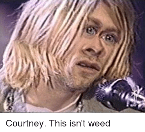 courtney this isnt weed 2543828 ✅ 25 best memes about arthur this isnt weed arthur this isnt,Courtney Memes