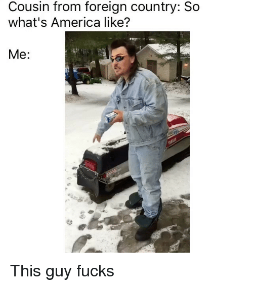 America, Funny, and Memes: Cousin from foreign country: So  what's America like?  Me This guy fucks