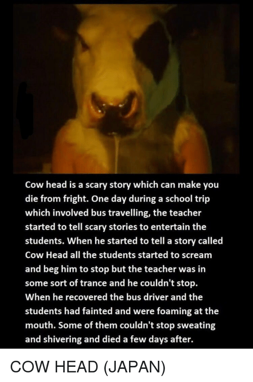 Cow Head Is a Scary Story Which Can Make You Die From Fright One Day