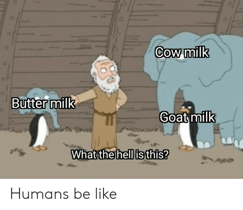 Be Like, Goat, and Dank Memes: Cow milk  Butter milk  Goat milk  What the hell is this? Humans be like