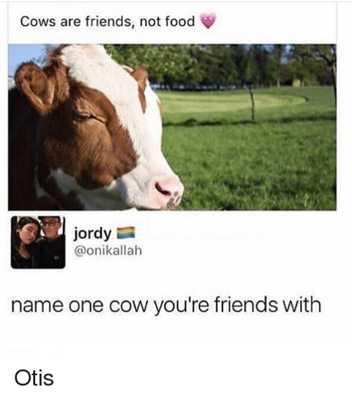 Food, Friends, and Memes: Cows are friends, not food  jordy  @onikallah  name one cow you're friends with Otis