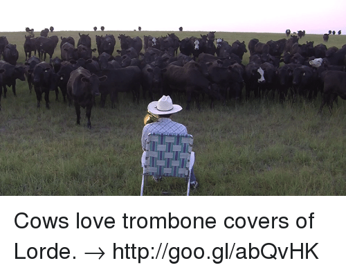 Dank, Lorde, and Covers: Cows love trombone covers of Lorde. → http://goo.gl/abQvHK