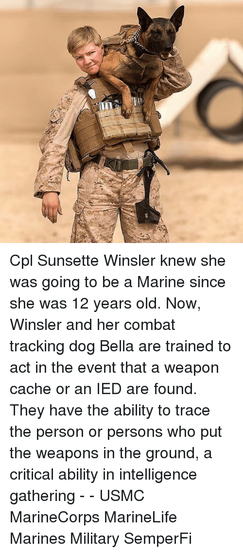 Memes, Cache, and Marines: Cpl Sunsette Winsler knew she was going to be a Marine since she was 12 years old. Now, Winsler and her combat tracking dog Bella are trained to act in the event that a weapon cache or an IED are found. They have the ability to trace the person or persons who put the weapons in the ground, a critical ability in intelligence gathering - - USMC MarineCorps MarineLife Marines Military SemperFi