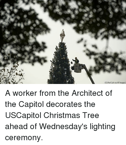 Christmas, Memes, and Christmas Tree: (CQ Roll Call via AP Images) A worker from the Architect of the Capitol decorates the USCapitol Christmas Tree ahead of Wednesday's lighting ceremony.