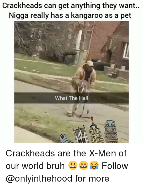 Bruh, Memes, and X-Men: Crackheads can get anything they want..  Nigga really has a kangaroo as a pet  What The Hell Crackheads are the X-Men of our world bruh 😬😬😂 Follow @onlyinthehood for more